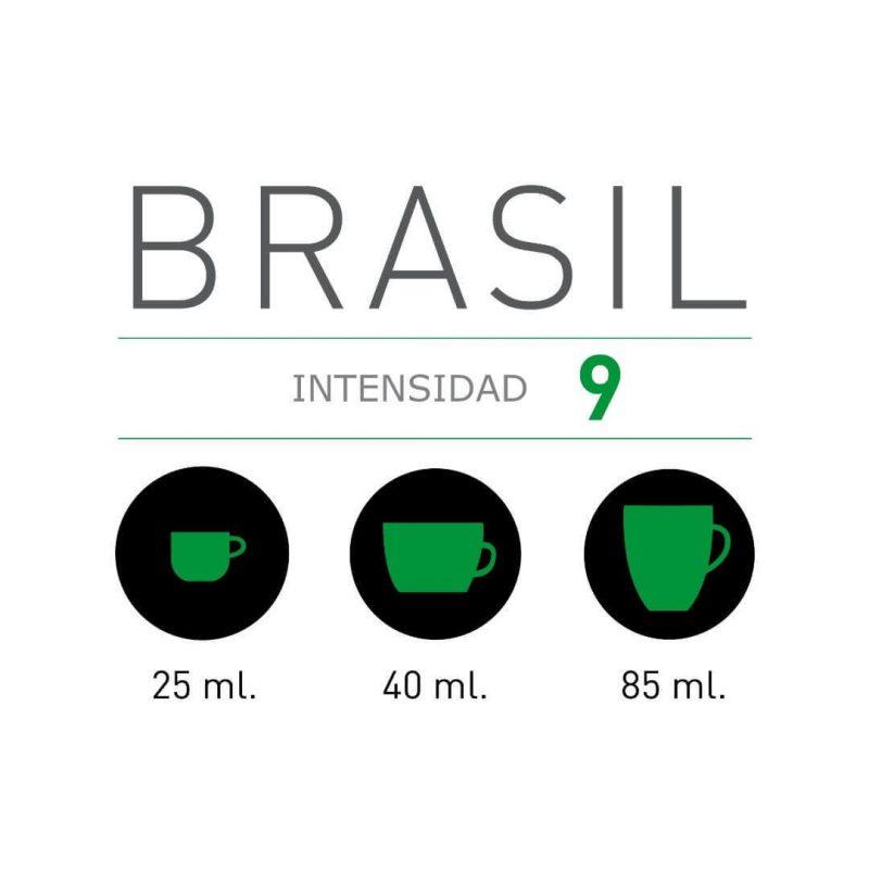 Intensidad Viaggio Brasil