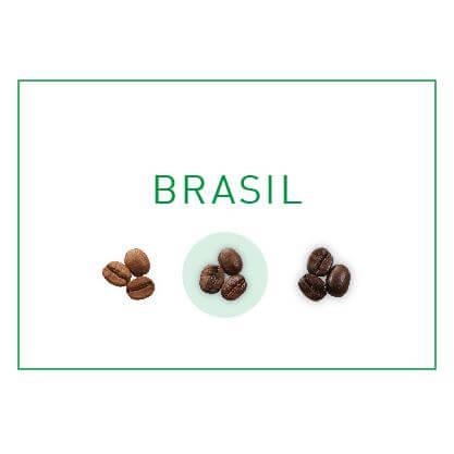 Tipo Tueste Café en Grano Brasil